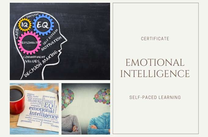 Emotional Intelligence<br>in 60 Minutes course image