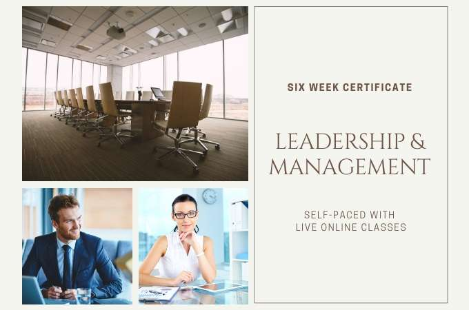Leadership & Management - 6 Weeks course image